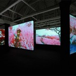Jack Shainman Gallery, West 20th St Richard Mosse-1