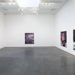 Marianne Boesky Gallery 24th St Kon Trubkovich Snow-1