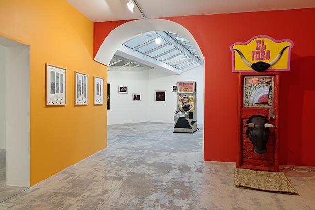 Galerie Georges-Philippe Nathalie Vallois Pilar Albarracin 1