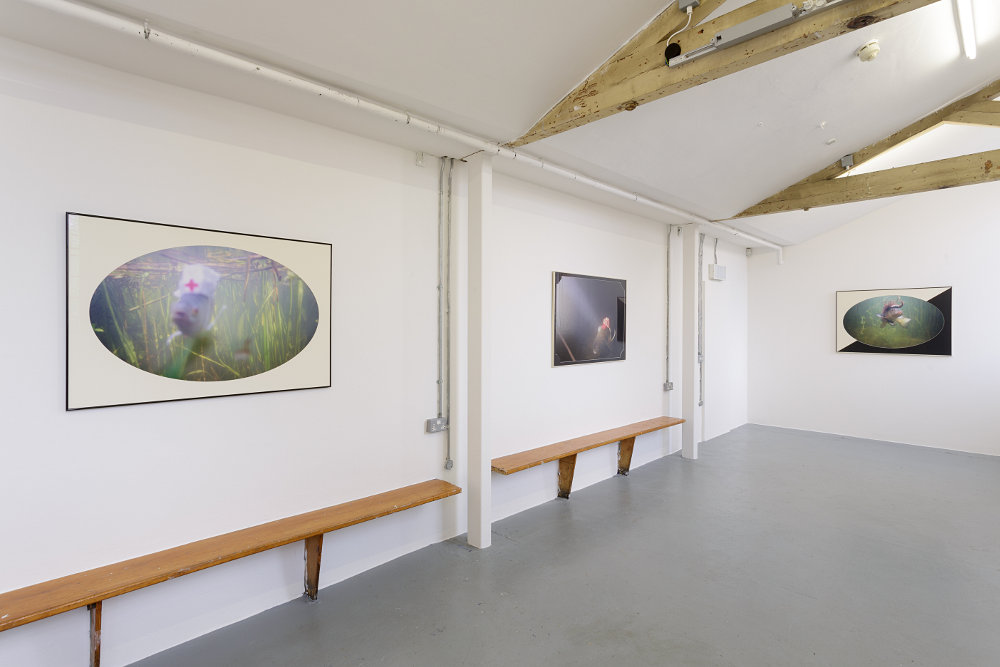 Zabludowicz Collection Invites Andrew Munks 1