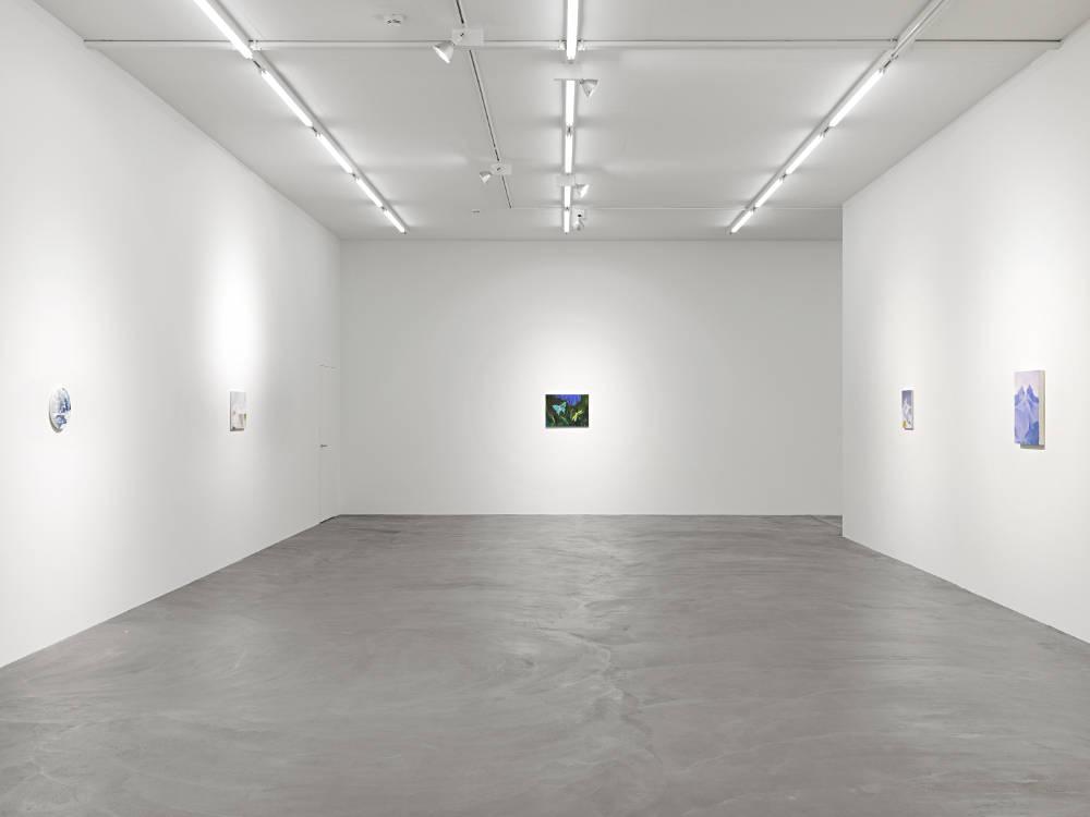 Galerie Eva Presenhuber Lowenbrau Karen Kilimnik 5