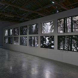 Dioramas @Palais de Tokyo, Paris  - GalleriesNow.net