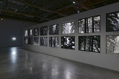 From GalleriesNow.net - Dioramas @Palais de Tokyo, Paris