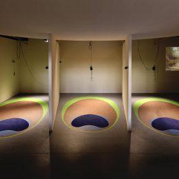 Hayoun Kwon: The Bird Lady @Palais de Tokyo, Paris  - GalleriesNow.net