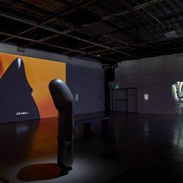 The Dream of Forms @Palais de Tokyo, Paris  - GalleriesNow.net