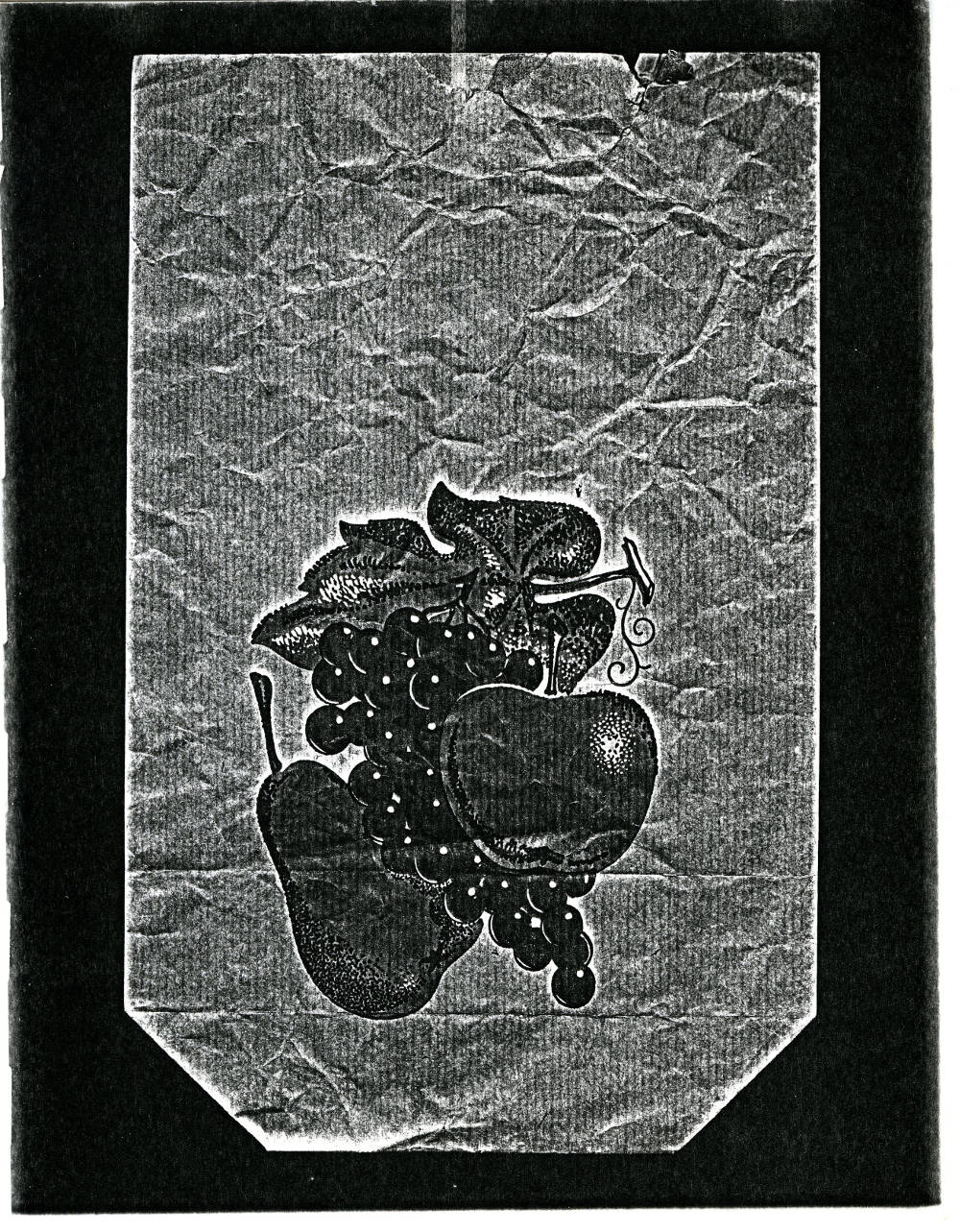 Pati Hill, Untitled (paper bag printed with fruit image), c. 1977-1979. Black and white photocopier print 27.9 x 21.6 cm 11 x 8 1/2 inches