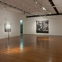 Caroline Rothwell: Falling Suspended @Roslyn Oxley9 Gallery, Sydney  - GalleriesNow.net
