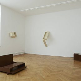 Vaclav Pozarek: HOH (Hund ohne Hose) @Barbara Wien, Berlin  - GalleriesNow.net