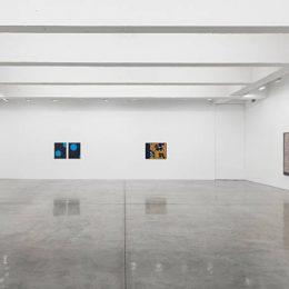 Lisa Oppenheim: A Durable Web @Tanya Bonakdar Gallery, New York  - GalleriesNow.net