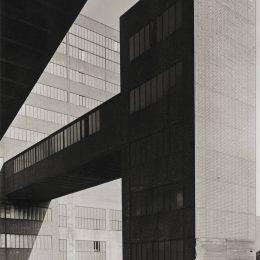 Albert Renger-Patzsch: Things @Jeu de Paume, Paris  - GalleriesNow.net
