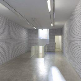 Camille Henrot: Testa di Legno @kamel mennour, r. du Pont de Lodi, Paris  - GalleriesNow.net