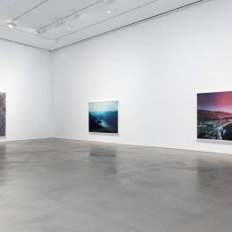 Florian Maier-Aichen @303 Gallery, New York  - GalleriesNow.net