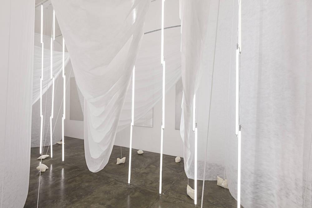 Galeria Nara Roesler Sao Paulo Carlito Carvalhosa 2