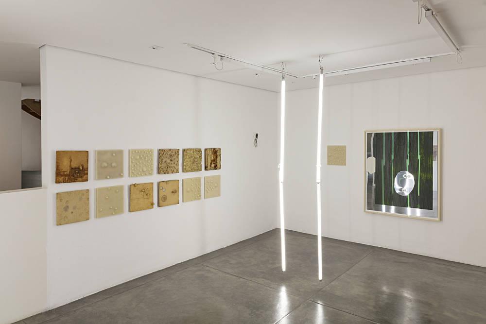 Galeria Nara Roesler Sao Paulo Carlito Carvalhosa 3