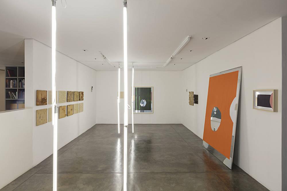 Galeria Nara Roesler Sao Paulo Carlito Carvalhosa 4