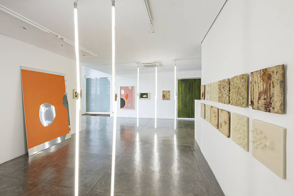 Galeria Nara Roesler Sao Paulo Carlito Carvalhosa 5