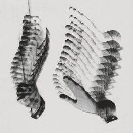 Photographisme. Klein, Ifert, Zamecznik @Centre Pompidou, Paris  - GalleriesNow.net