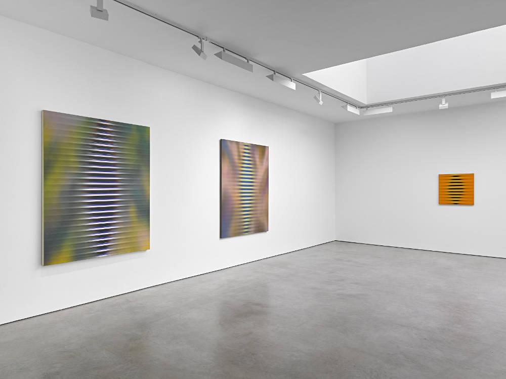 Lisson Gallery Roy Colmer 1