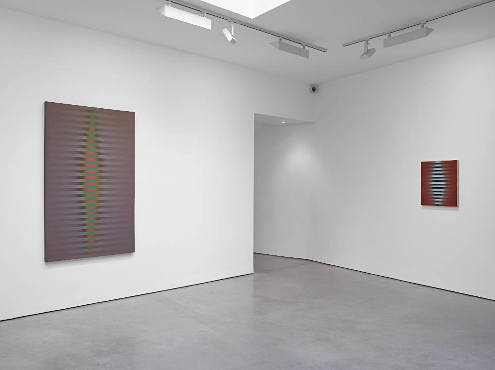 Lisson Gallery Roy Colmer 3