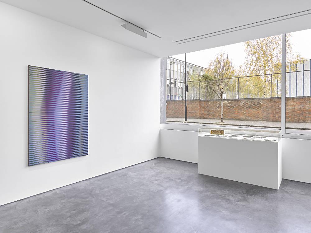 Lisson Gallery Roy Colmer 4