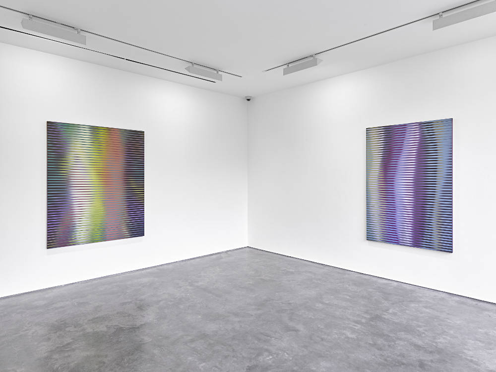 Lisson Gallery Roy Colmer 6