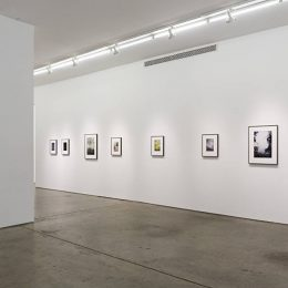 Jitka Hanzlova: Forest @Yancey Richardson Gallery, New York  - GalleriesNow.net