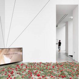 Alexey Vanushkin: Splay Anthem @Galerie Thomas Schulte, Berlin  - GalleriesNow.net