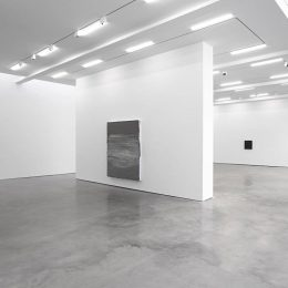 Jason Martin @Lisson Gallery, New York, New York  - GalleriesNow.net