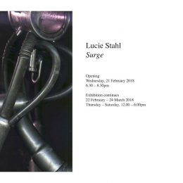 Lucie Stahl: Surge @Cabinet, London  - GalleriesNow.net