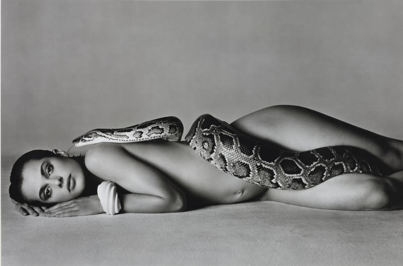 Richard Avedon, NASTASSJA KINSKI AND THE SERPENT, LOS ANGELES, CALIFORNIA, 1981. Oversized silver print. Sheet: 72.4 x 108.6cm., 28 ½ x 42 ¾in.