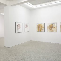 Björn Roth: Nervettis 2009-2018 @BERG Contemporary, Reykjavík  - GalleriesNow.net