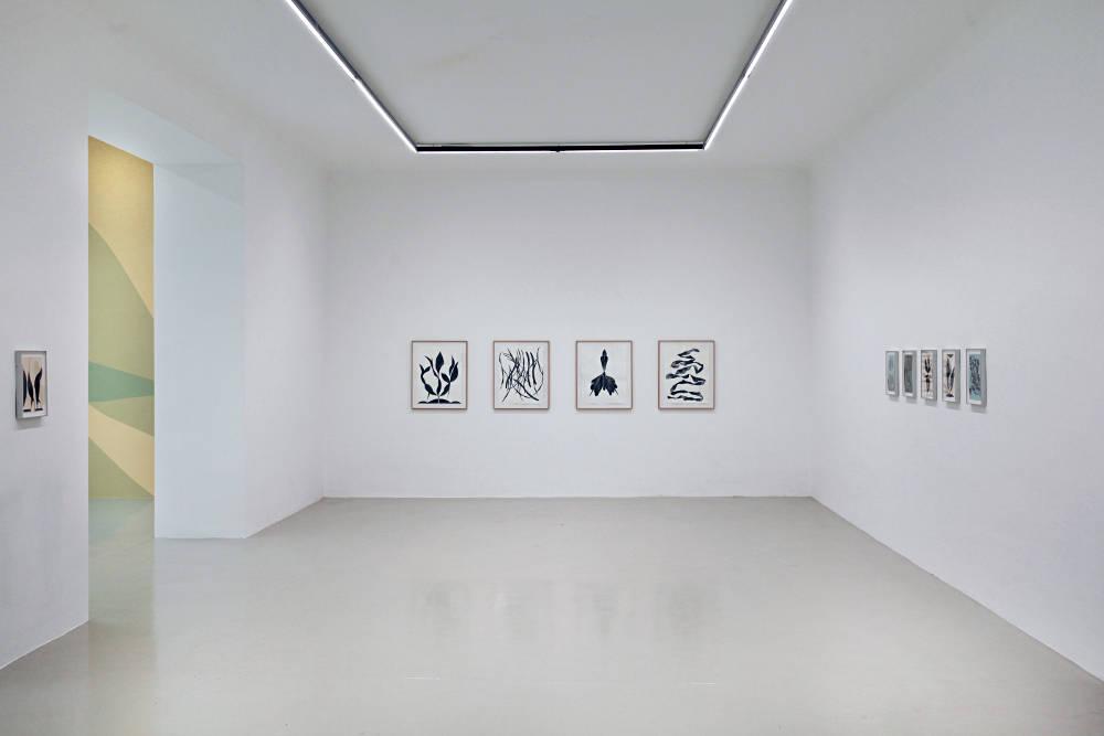 Galerie Lisa Kandlhofer Frauke Dannert 2