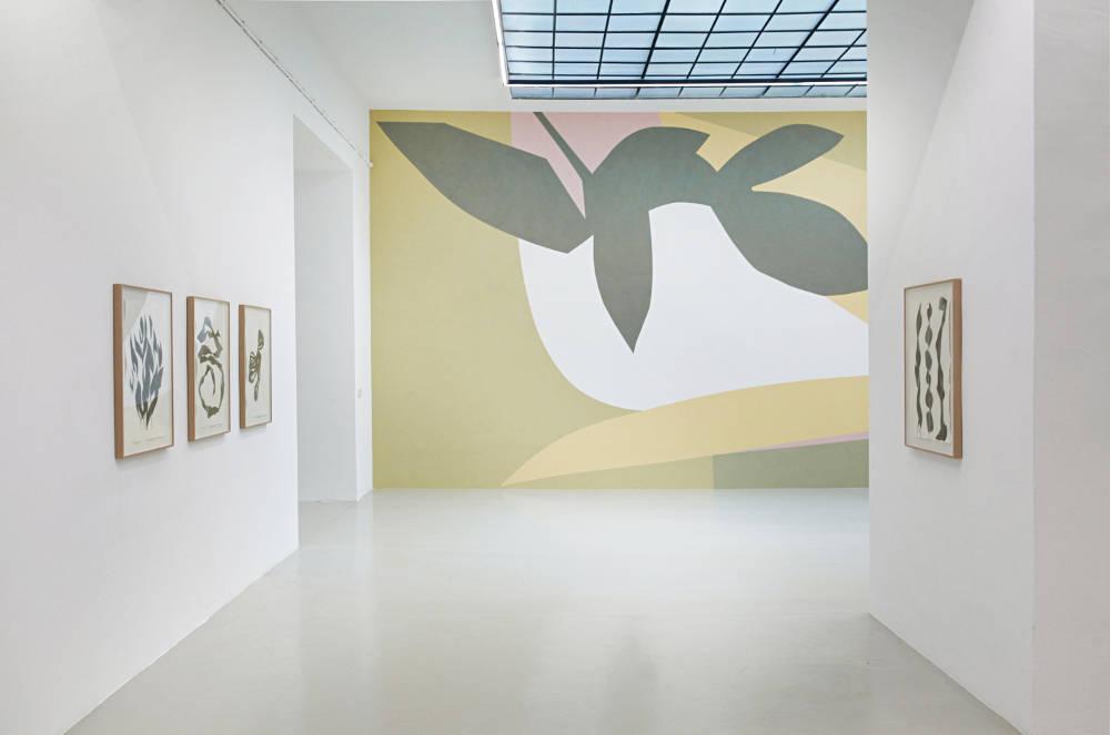 Galerie Lisa Kandlhofer Frauke Dannert 4