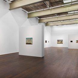 Anj Smith: If Not, Winter @Hauser & Wirth Zürich, Zürich  - GalleriesNow.net