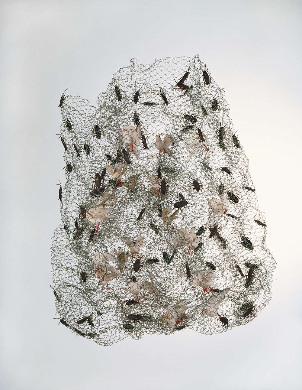Leon Ferrari, Pigeons and cockroaches, 2003. Hanging sculpture 80 x 60 x 57 cm