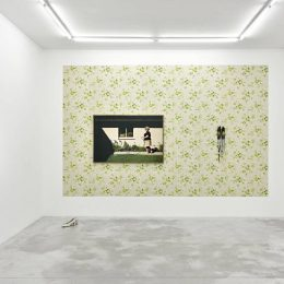 Genevieve Gaignard: Hidden Fences @Praz-Delavallade, Paris  - GalleriesNow.net