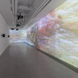 Sondra Perry: Typhoon coming on @Serpentine Sackler Gallery, London  - GalleriesNow.net
