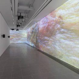 Sondra Perry: Typhoon coming on @Serpentine Sackler Gallery, London  - GalleriesNow.net