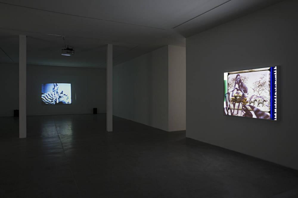 VNH Gallery TJ Wilcox 1