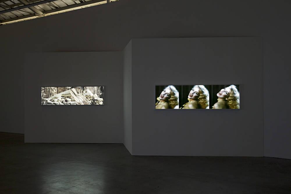 VNH Gallery TJ Wilcox 6