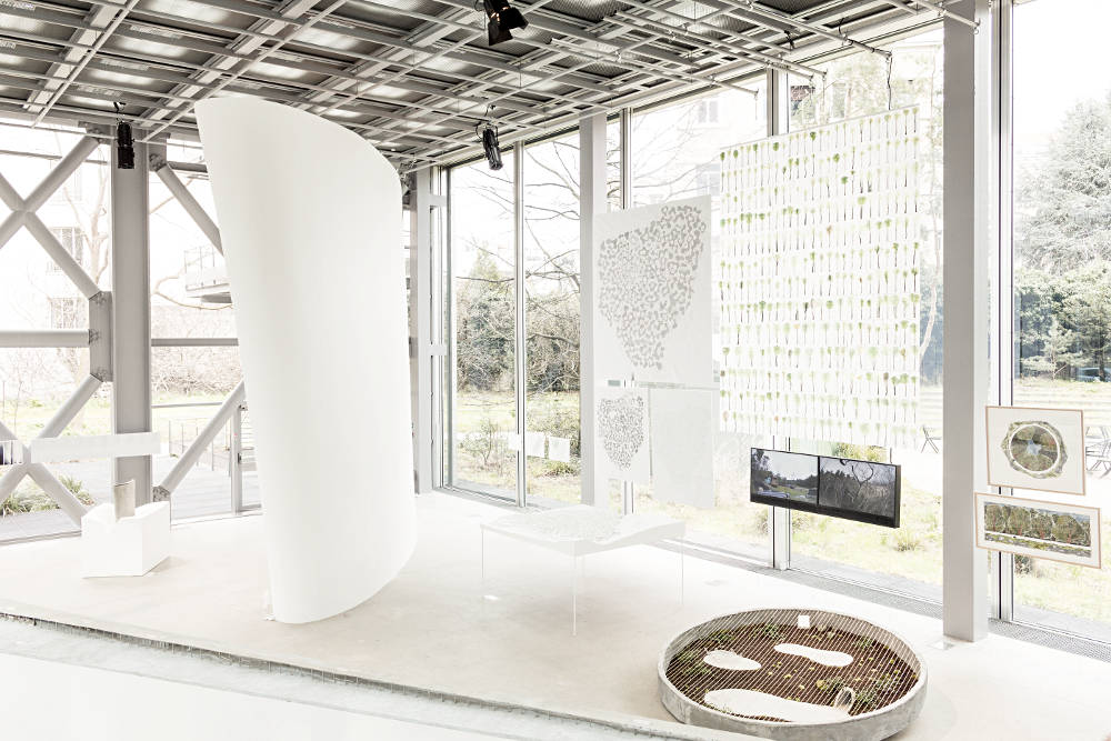 Fondation Cartier Junya Ishigami 7