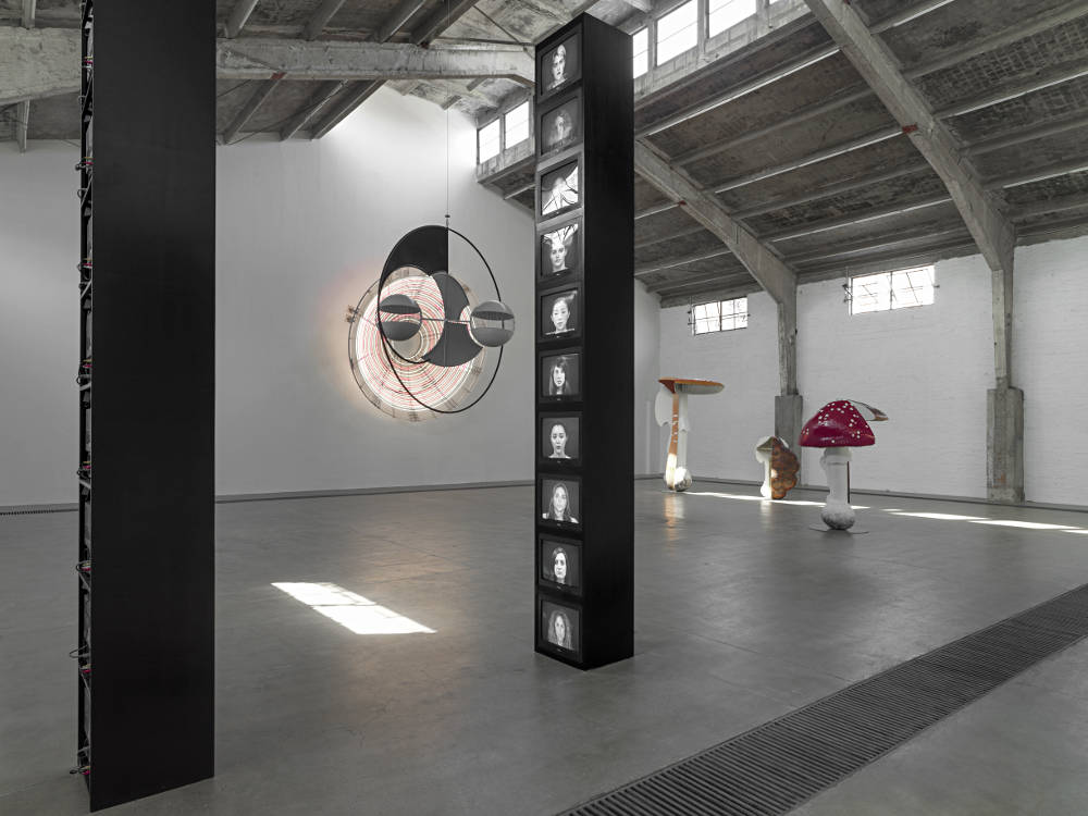 Galleria Continua Beijing Carsten Holler 2