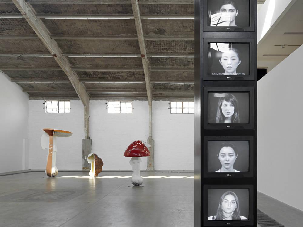 Galleria Continua Beijing Carsten Holler 3