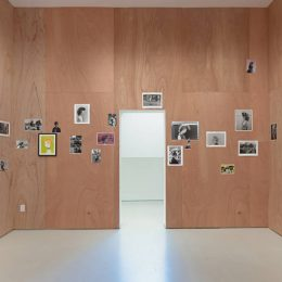 Ed Templeton: Hairdos of Defiance @Roberts Projects, Los Angeles  - GalleriesNow.net
