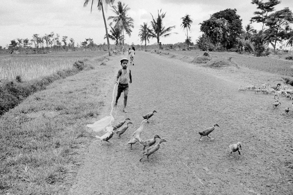 Wim Wenders, Boy with ducks, Bali, 1978, Courtesy the artist and BlainSouthern, © Wim Wenders