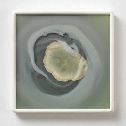 Dove Allouche: Des caractères extérieurs @gb agency, Paris  - GalleriesNow.net