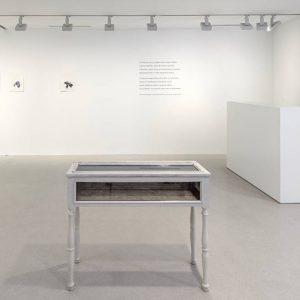 Patrick Neu: Iris, Jardin des délices @Galerie Thaddaeus Ropac, Marais, Paris  - GalleriesNow.net