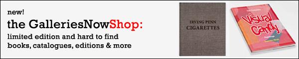 visit the GalleriesNow Shop