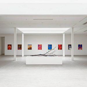 Urs Fischer: soft @Sadie Coles HQ Kingly Street, London  - GalleriesNow.net