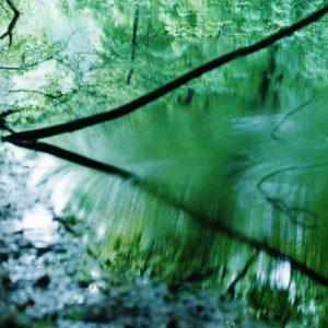 Risaku Suzuki: Water Mirror @Christophe Guye Galerie, Zürich  - GalleriesNow.net